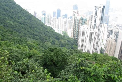 hong kong nature wilderness