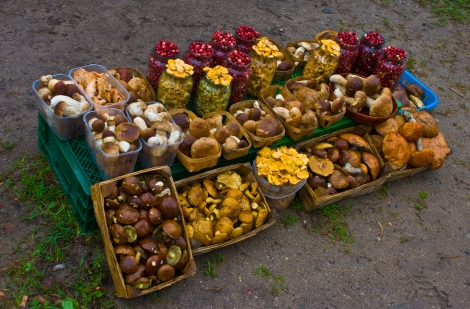 Roadside mushroom stall, Lithuania, 13 Sept. 2008. Wiki Commons image. Credit: Phillip Capper from Wellington, New Zealand.