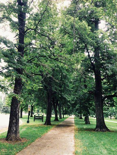 Cheesman Park Run